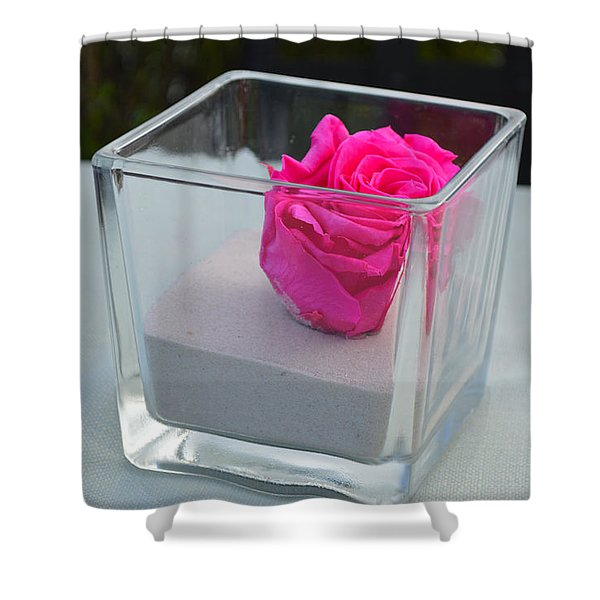 Pink Rose In Venice Shower Curtain