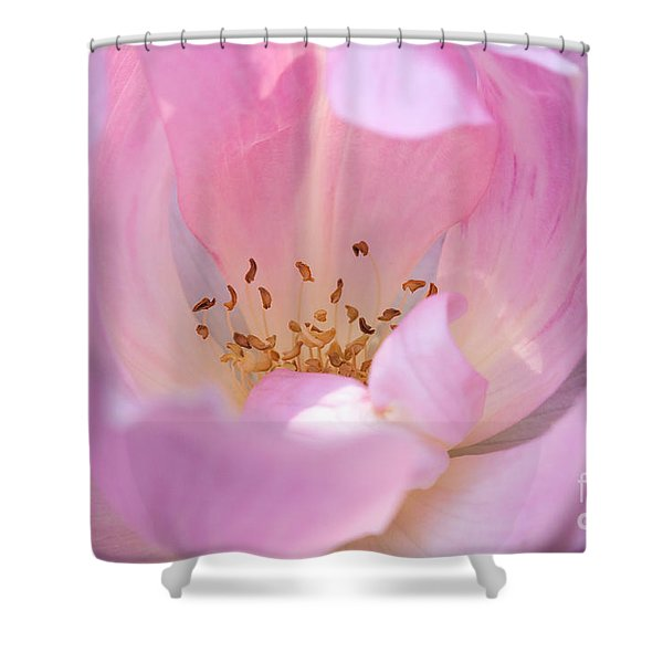 Pink Swirls Shower Curtain