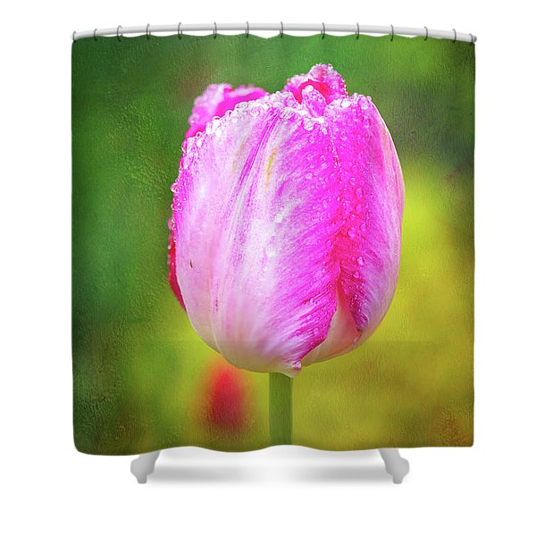 Pink Tulip In The Rain Shower Curtain