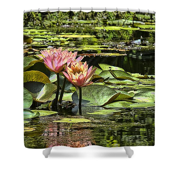 Pink Water Lily Reflections Shower Curtain