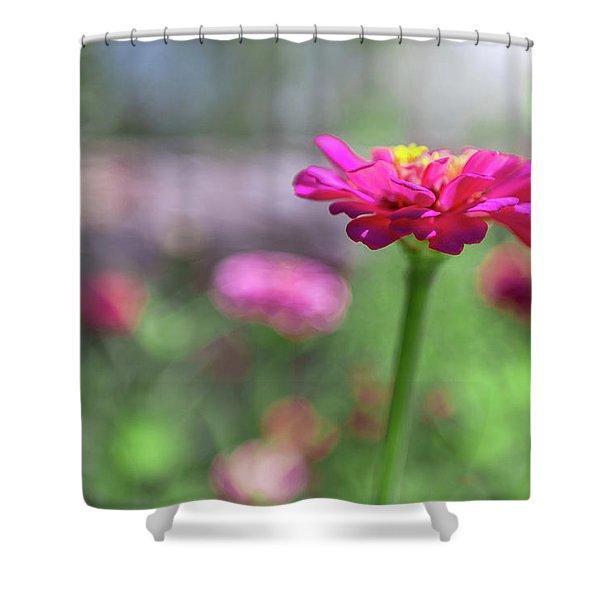 Pink Zinnia Shower Curtain