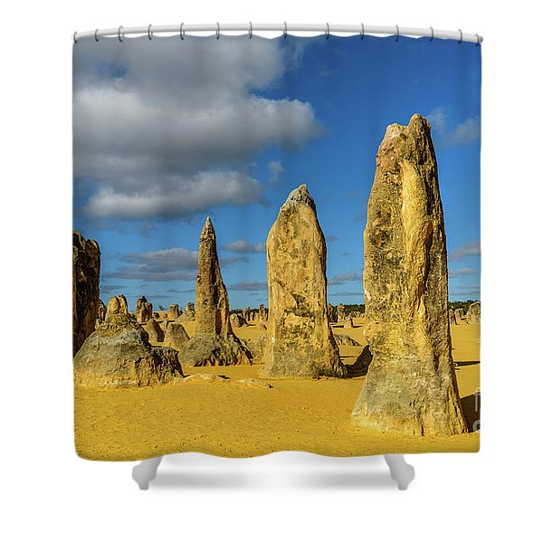 Pinnacles 6 Shower Curtain