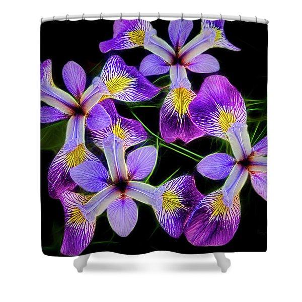 Pinwheel Purple Iris Glow Shower Curtain