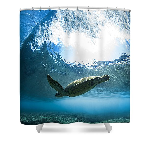 Pipe Turtle Glide Shower Curtain