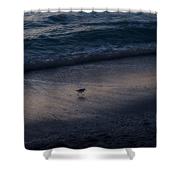Piper At Dusk Shower Curtain