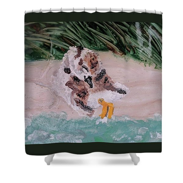 Piping Plover Chick 2 Shower Curtain