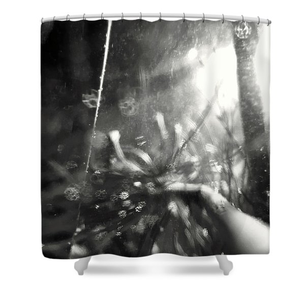Pirateship Wreck Shower Curtain