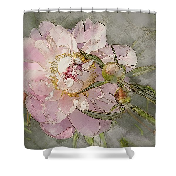 Pivoine Shower Curtain
