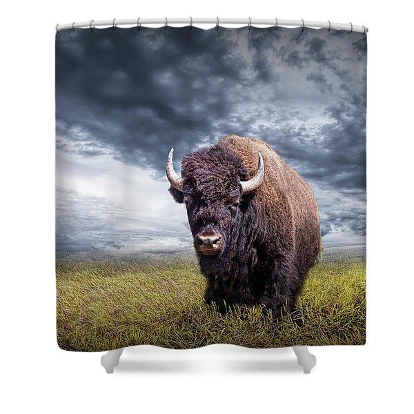 Plains Buffalo On The Prairie Shower Curtain