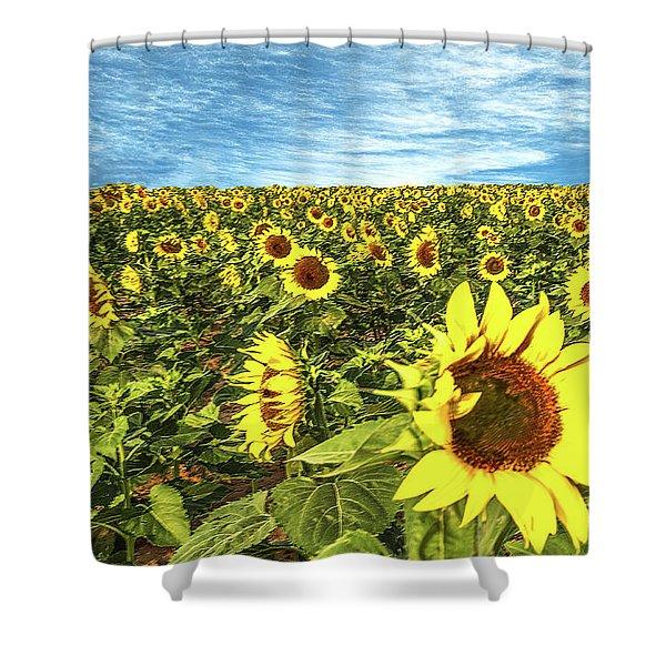 Plains Sunflowers Shower Curtain