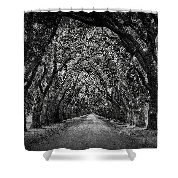 Plantation Oak Alley Shower Curtain