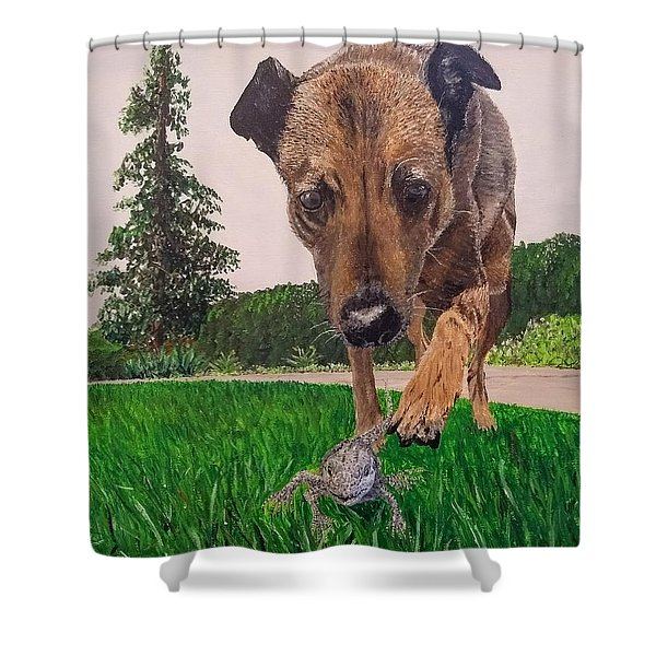 Shower Curtain featuring the painting Play With Me by Kevin Daly