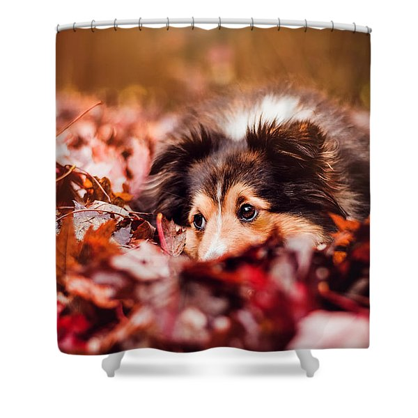 Playful Autumn Dog Shower Curtain
