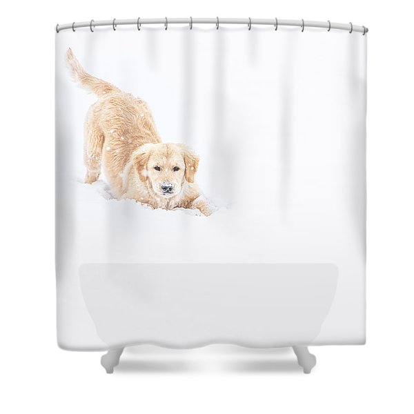 Playful Puppy In So Much Snow Shower Curtain