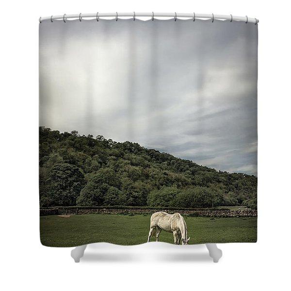 Pleasant Valley Sunday Shower Curtain