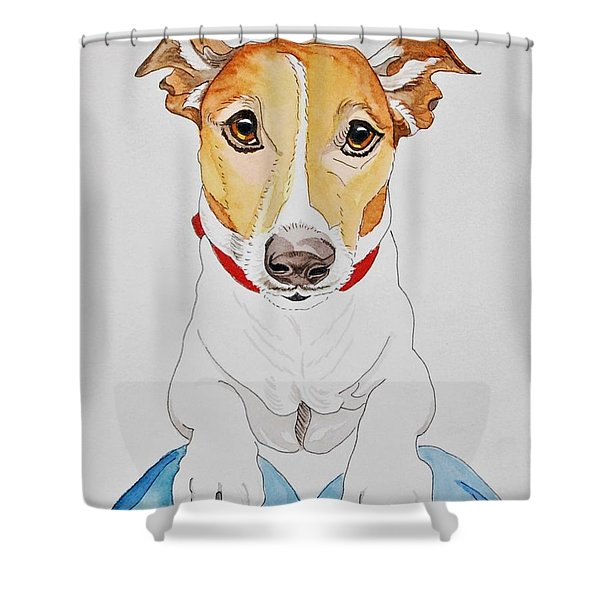 Please Shower Curtain