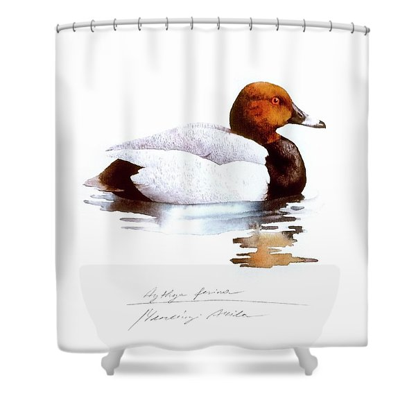 Pochard Shower Curtain