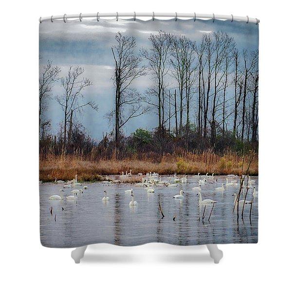 Pocosin Lakes Nwr Shower Curtain