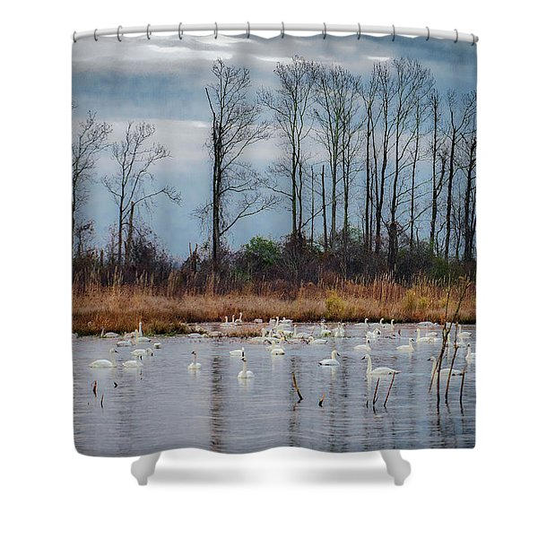 Pocosin Lakes Nwr Shower Curtain