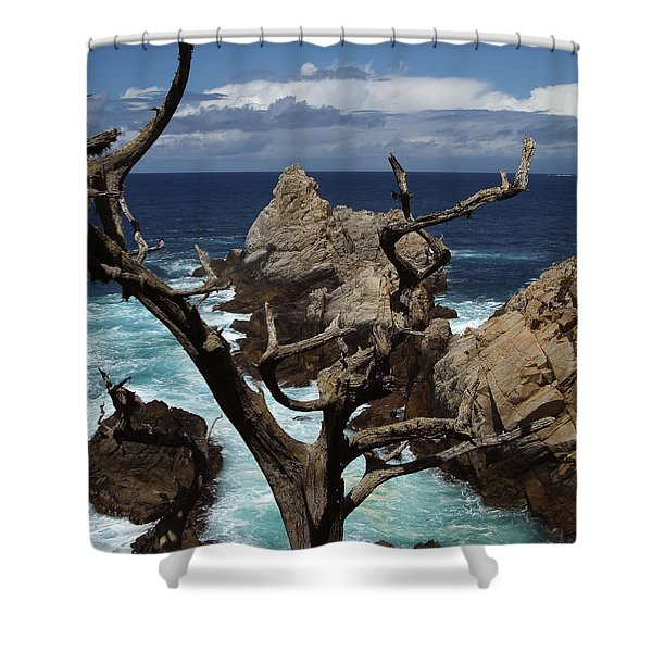 Point Lobos Rocks And Branches Shower Curtain