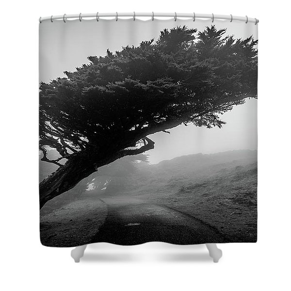 Point Reyes Fog Black And White Shower Curtain
