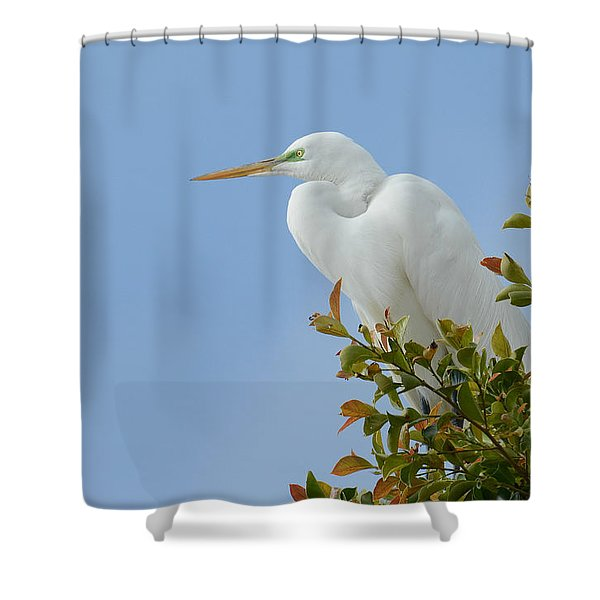Poised 2 Shower Curtain