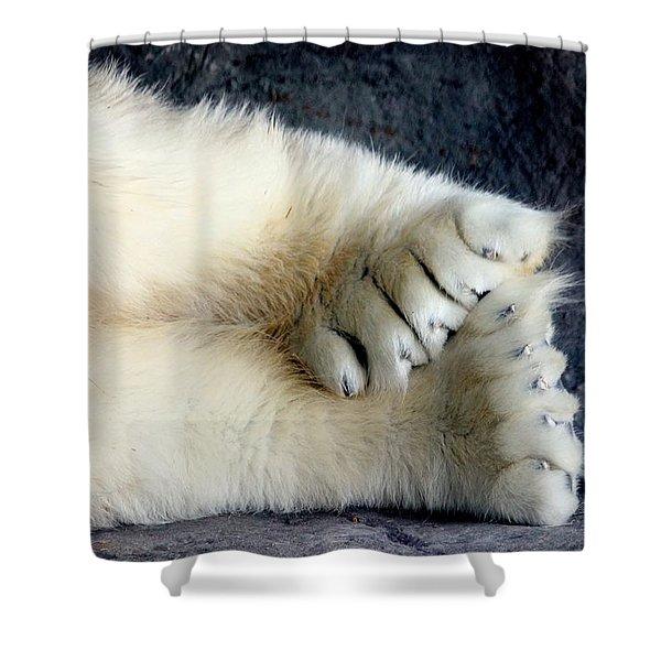 Polar Bear Paws Shower Curtain