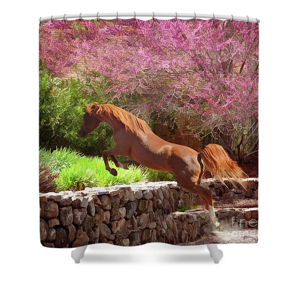 Shower Curtain featuring the photograph Polaris The Jumper by Melinda Hughes-Berland