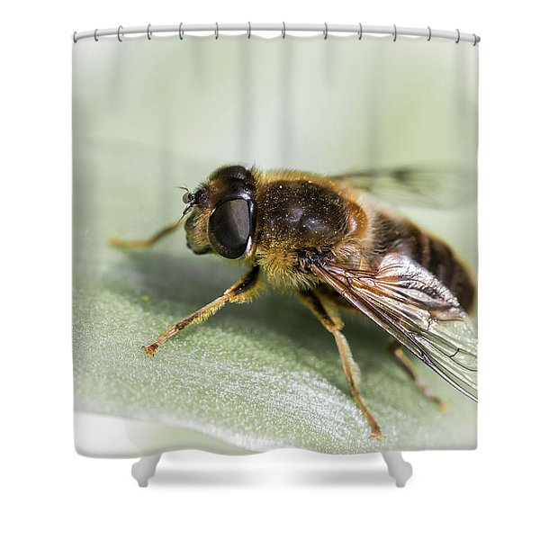 Pollen Dusted Shower Curtain