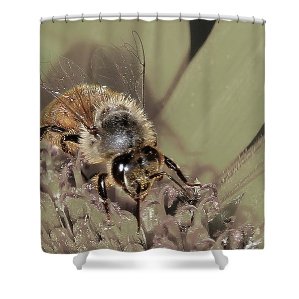 Pollinating Bee Shower Curtain