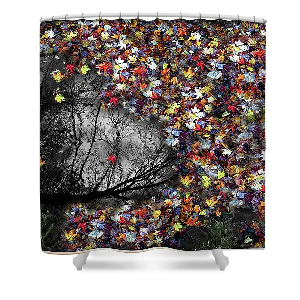 Shower Curtain featuring the photograph Pollacks Pool by Wayne King