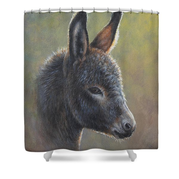 Poncho Shower Curtain