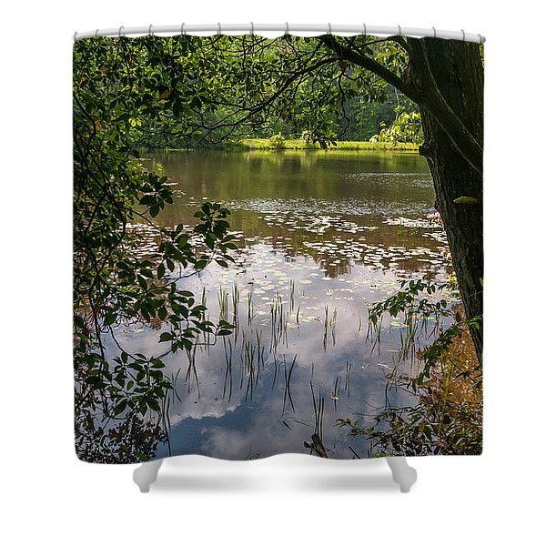 Pond In Spring Shower Curtain