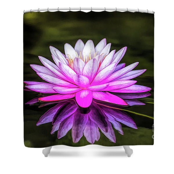Pond Water Lily Shower Curtain