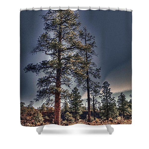 Ponderosa Pines At The Bonito Lava Flow Shower Curtain