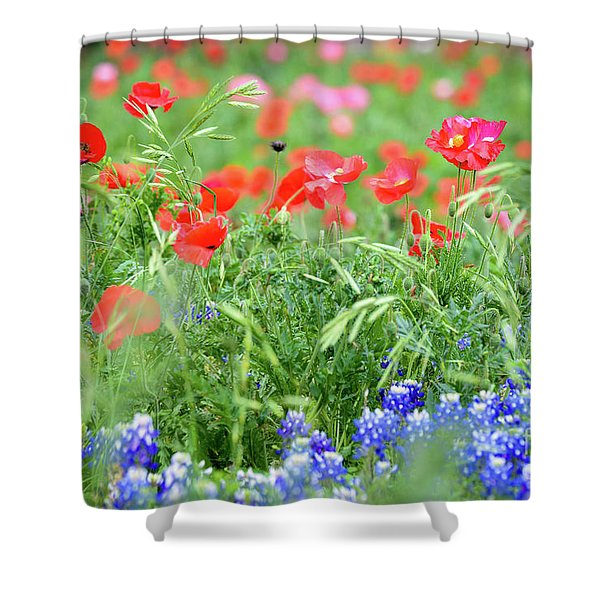 Poppies And Bluebonnets Shower Curtain