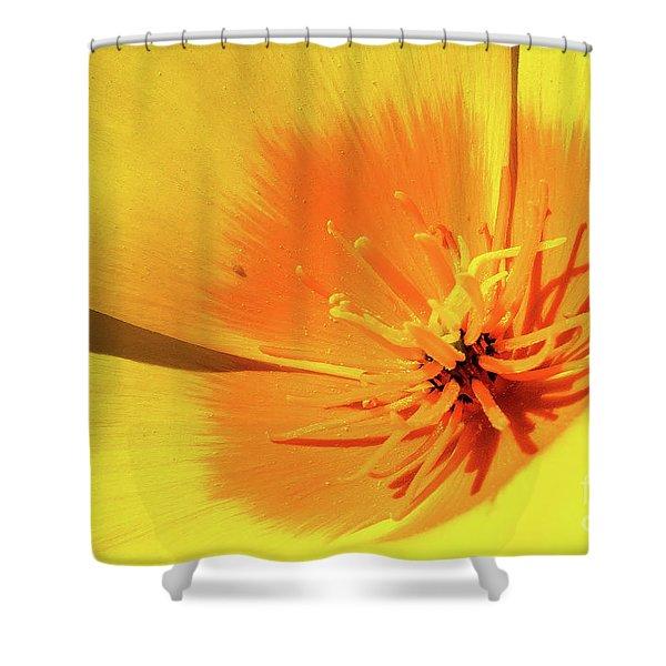 Poppy Impact Shower Curtain