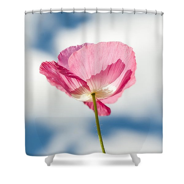 Poppy In The Clouds Shower Curtain