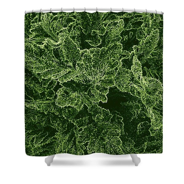 Poppy Leaves Shower Curtain