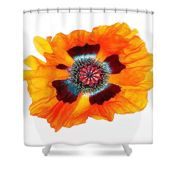 Poppy Pleasing Shower Curtain