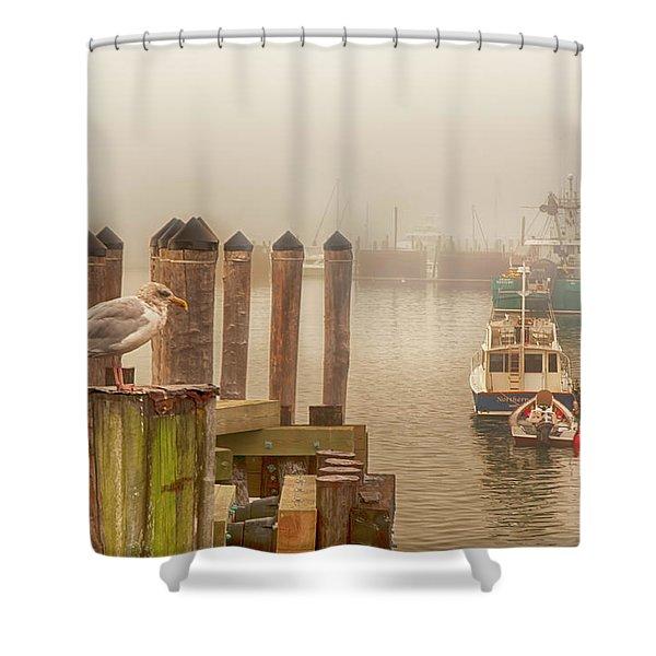 Portland Harbor Morning Shower Curtain