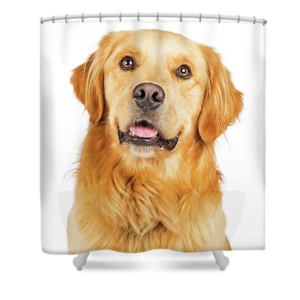 Portrait Happy Purebred Golden Retriever Dog Shower Curtain