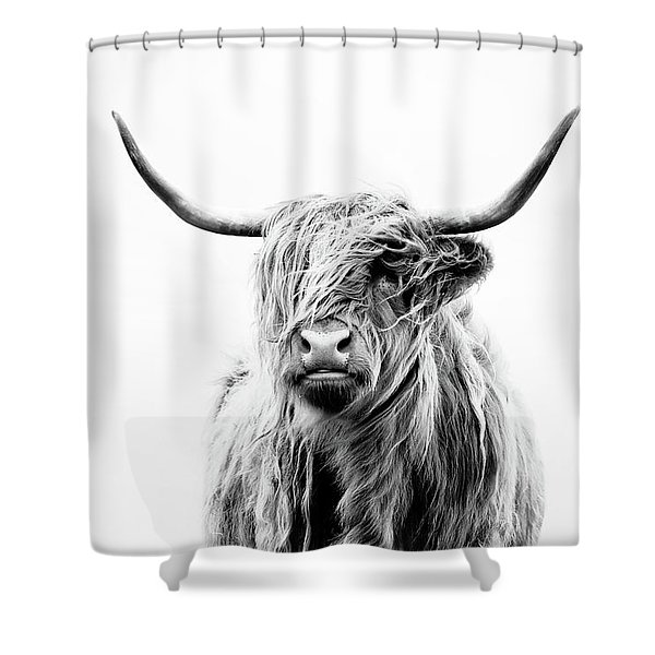 Portrait Of A Highland Cow Shower Curtain
