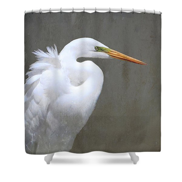 Portrait Of An Egret Rectangle Shower Curtain