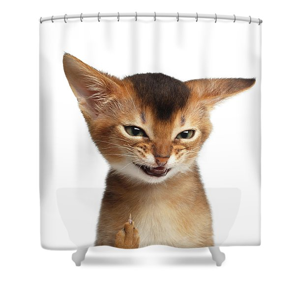 Portrait Of Kitten With Showing Middle Finger Shower Curtain