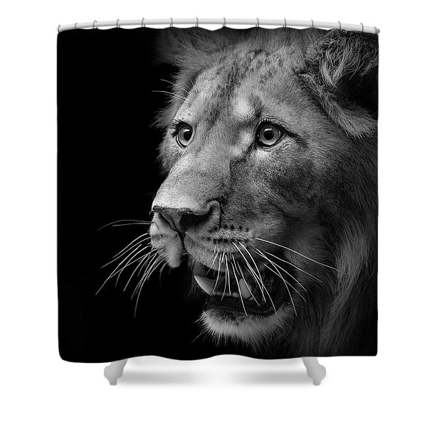 Portrait Of Lion In Black And White II Shower Curtain