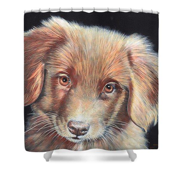 Portrait Of Toby Shower Curtain