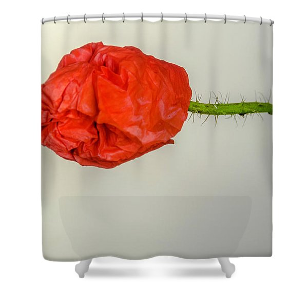 Posing Fire Red Poppy Shower Curtain