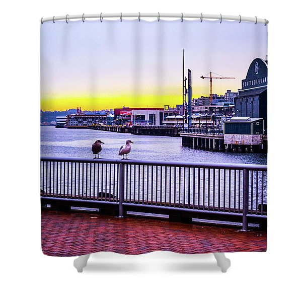 Posted  Shower Curtain