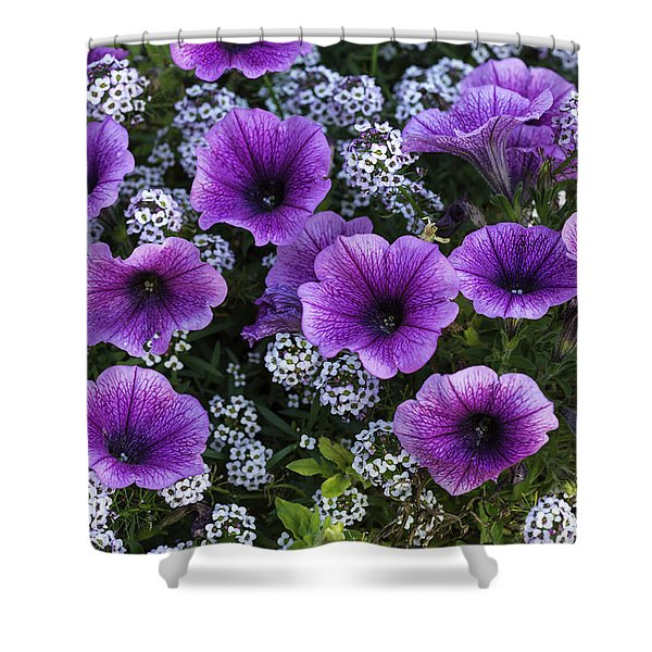 Pot Of Flowers Shower Curtain